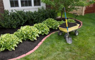 landscaped plant area with wellbarrow filled with mulch
