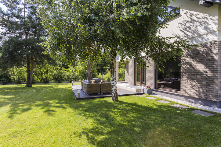 Benefits Of Adding Trees To Your Property 2